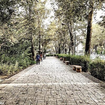 کانال قصههای پارک
